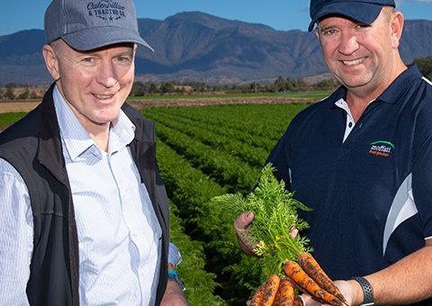 Close up with David Pugh and Steve Moffatt on Moffatt Carrot farm holding fresh carrots