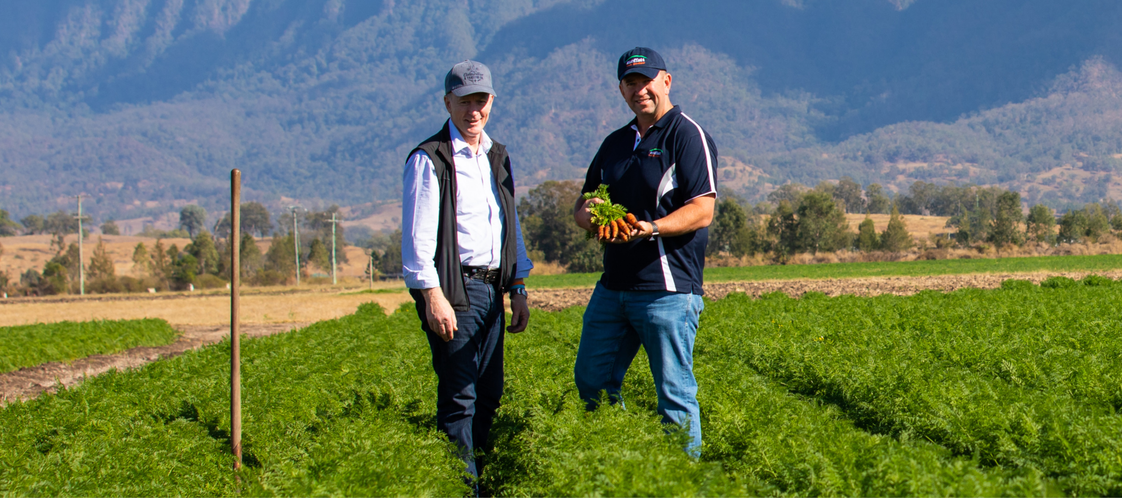 David Pugh with Steve Moffatt on Moffat Carrot Farm holding fresh carrots